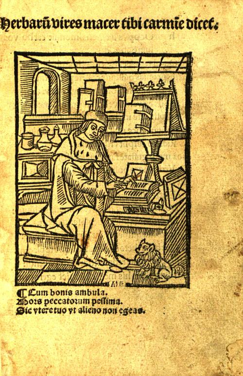 Macer1522-title1.jpg